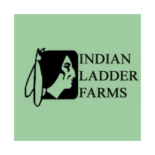indian-ladder-logo-square-transparent-border